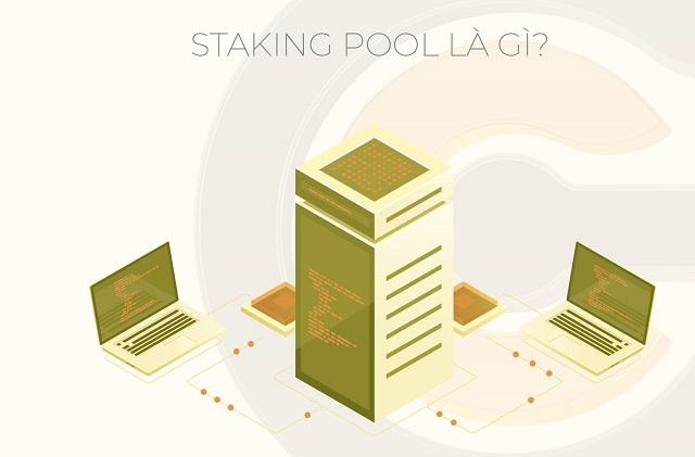 Staking Pool là gì và cách thức stake kiếm lời với số lượng coin ít
